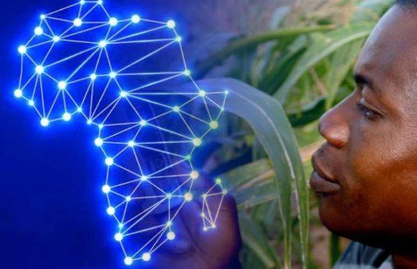 アフリカでのブロックチェーンイメージ画像