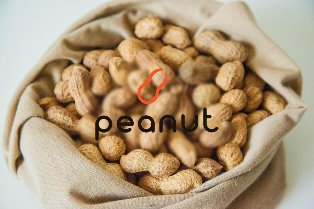 仮想通貨NUX(Peanut)のロゴが本物のピーナッツの中に表示されているオリジナル画像